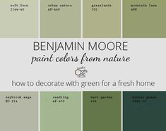 How To Decorate With Green - Rustic Crafts & Chic Decor Green Wall Color, Green Paint Colors, Kitchen Paint Colors, Exterior Paint Colors, Paint Colors For Home, Wall Colors, House Colors, Green Bedroom Walls, Sage Green Bedroom