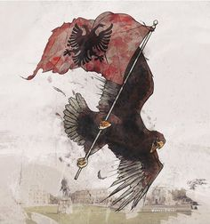 Kosovo ebook by Tim Judah - Rakuten Kobo Flag Drawing, Eagle Drawing, Albania Travel, Visit Albania, Albanian Tattoo, Albanian Language, Albanian Wedding, Albanian Culture, Eagle Art