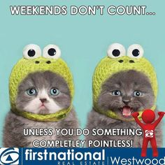 Have a great weekend!  #fridayfunday #friday #happyfriday #happyweekend #funnny #fun #thankgoditsfriday #playtime #weekendvibes #weekendmood #weekendishere #funtimes #tgif #realestatehttps://www.instagram.com/p/BMqOQq1gb9V/