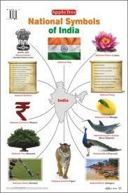 Royal Infrastructure: National Symbols of INDIA India Poster, India Map, India India, Gernal Knowledge, General Knowledge Facts, Knowledge Quotes, India For Kids, India Crafts, India Country
