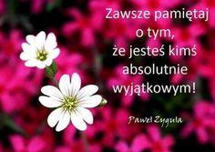 Motto, Good Morning, Nostalgia, Humor, Motivation, Inspiration, Polish, Facebook, Magick