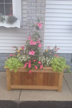 Container gardening: Mandevilla vine makes a great centerpiece in this planter I had built around my chimney.