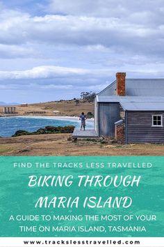 Little Island, New Zealand Travel, Top Of The World, Tasmania, Australia Travel, Travel Guides, Travel Inspiration, Travel Destinations, Travel Photography