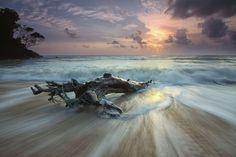 #beach #clouds #dawn #dusk #horizon #island #landscape #motion #nature #ocean #outdoors #sand #sea #seafoam #seascape #seashore #shore #sky #surf #travel #tree trunk #water #waves