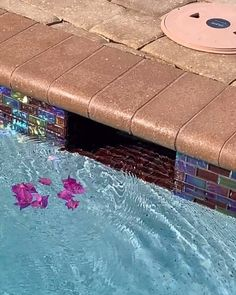 """The """"All-In-One"""" basket will TRANSFORM your pool! Switch baskets and watch your pool skimmer eliminate debris 3 TIMES faster! backyard videos The """"Bernoulli Effect"""" Swimming Pools Backyard, Pool Decks, Garden Pool, Pool Landscaping, Skimmer Pool, Floating Pool Skimmer, Piscine Diy, Pool Landscape Design, Gardens"""