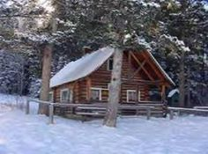 Cabin Rentals are listed for each state so that you can find the perfect cabin for your family getaway; winter, spring, summer or fall. We hope you find the perfect cabin rental for your upcoming trip. North Carolina Cabins, Georgia Cabin Rentals, Tennessee Cabins, Colorado Cabins, Places To Rent, Family Getaways, Lake Tahoe, State Parks, Ohio