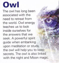 Owl spiritual guide. It's also been connected to wisdom, journeying, and death
