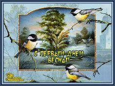 Поздравительные открытки - поздравька ком