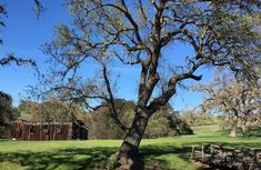 Take a road trip through rolling hillsides of the Santa Ynez Valley.Discover world-class wineries, historic towns, art galleries, hidden gems