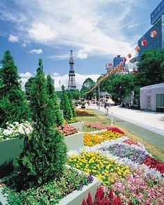Fascinating Sapporo - http://www.travelandtransitions.com/destinations/destination-advice/asia/
