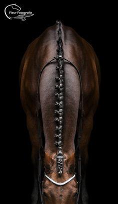 Horse detail | ©Fleur Fotografie