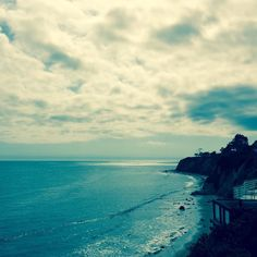 All is quiet in the yard // #santabarbara #socal #ocean #california #coastalliving #cjrebecky