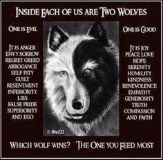 Which wolf?