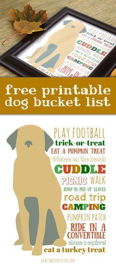 Dog Bucket List for