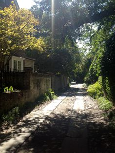 One of our favorite streets, Longitude Lane, South of Broad, Charleston, SC #longitudelane #southofbroad #charleston