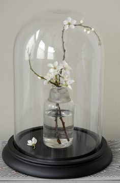 Small Victorian Glass Display Dome - £39.95