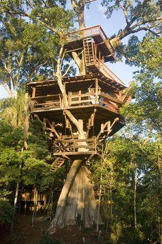 3-story treehouse in Brazil!!