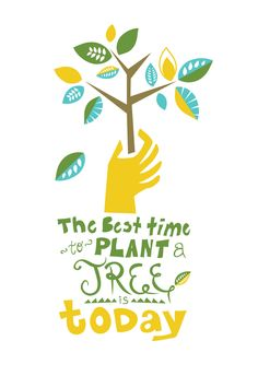 Argumentative Essay On Health Care Reform Plant A Tree Poster Designed By Leah Wiegmann Essays On English Literature also Thesis In Essay Go Green Poster By Mohammed Eisa Via Behance  Try  Pinterest  Diwali Essay In English