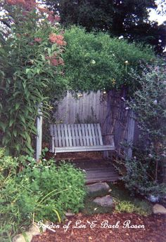 Wooden arbor swing with trumpet vine & sweet autumn clematis.