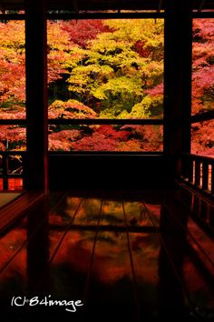 Ruriko-in Temple, Kyoto, Japan 瑠璃光院,京都  Beautiful Places To Visit, Beautiful World, Japan Landscape, Japan Garden, Temple, Photos Voyages, Japanese Architecture, Kyoto Japan, Japanese Culture