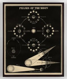 Moon Phases Vintage Print Phases of the Moon by CapricornPress