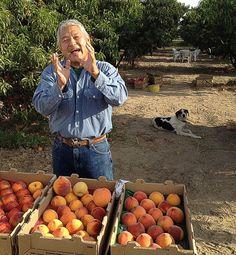 David Mas Masumoto and his peach farm