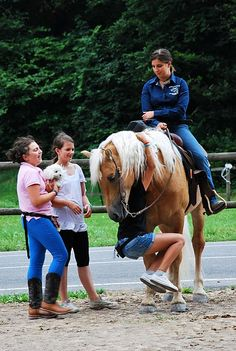 every horse will be bomb-proof. so kids can do whatever and just have fun