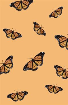 Images By Olivia On Butterfly Wallpaper Iphone | Iphone