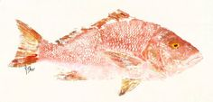 Saw these peices of Art at Images. theyre awesome! Red Snapper  Rosy  Gyotaku Fish Rubbing  Limited by fredfisher, $85.00