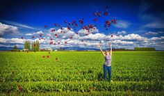 Throwing Tulips by Ian Stotesbury -- La Conner, Washington State Oh The Places You'll Go, Washington State, Tulips, Photography, Photograph, Fotografie, Tulip, Fotografia, Photoshoot