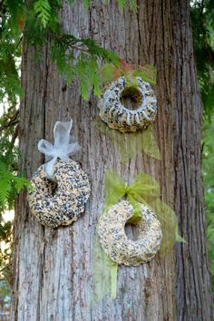 The Nitty Gritty Potager: Bird Seed Wreaths - They're For The Birds - Modern Design Bird Feeder Plans, Bird House Feeder, Diy Bird Feeder, Bird Suet, Homemade Bird Houses, Homemade Bird Feeders, Bird Seed Ornaments, Garden Ornaments, Bird House Kits