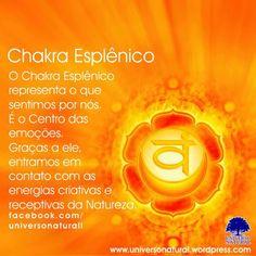 O Chakra Esplênico representa o que sentimos por nós. É o Centro das emoções. Graças a ele, entramos em contato com as energias criativas e receptivas da Natureza. Nesse nível desenvolvemos um senso de identidade pessoal, de limites psicológicos, de avaliação de nossas forças pessoais, modificando, com isto, a nossa forma de interagir, não só com a nossa família, como também com o mundo ao nosso redor. #universonatural #mergulhointerior #limpezaenergetica