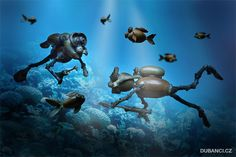 Dubánci podvodníci - potápěči