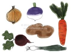 Root Vegetables Root Vegetables, Fox Design, Red Fox, Little Red, How To Draw Hands, Greeting Cards, Hand Reference, Fox