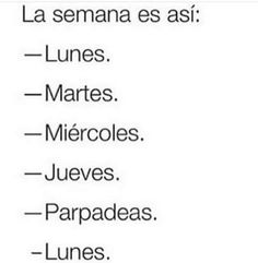 Las mejores imagenes chistosas, imagenes graciosas, fotos graciosas, imagenes para whatsapp, chistes cortos, fotos para facebook y frases graciosas Wise Quotes, Funny Quotes, Inspirational Quotes, Meme Generation, Spanish Jokes, Funny Images, Funny Pictures, Funny V, Good Sentences