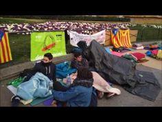 Gran éxito de crítica y público en la acampada independentista de Plaza ...