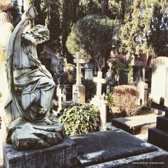 protestant cemetery rome    Read my blogpost here: http://www.blocal-travel.com/another-rome-ostiense/cemeteries-in-rome/