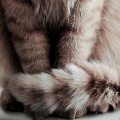 hermione granger aesthetic | Tumblr