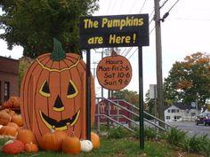 "pumpkin patch sign ""The Pumpkins Are Here"" hours of operation- matt to make Pumpkin Farm, Diy Pumpkin, Pumpkin Carving, Pumpkin Patch Corn Maze, Pumpkin Patches, Vintage Halloween, Happy Halloween, Garden Center Displays, Pumpkin Display"