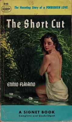 The Short Cut - Ennio Flaiano. Cover art by Stanley Meltzoff..