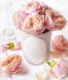 Give a second life to your candle pot! Pots, Recycled Jars, Candle Diffuser, Dusty Rose, Decoration, Scented Candles, Pink Roses, Planting Flowers, Ana Rosa