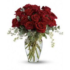 Order Full Heart - 16 Premium Red Roses flower arrangement from Flowers Express Inc, your local Castries, St. Send Full Heart - 16 Premium Red Roses floral arrangement throughout Castries, St. Lucia and surrounding areas. Rosen Arrangements, Floral Arrangements, Ecuadorian Roses, Anniversary Flowers, Online Florist, Rose Vase, Same Day Flower Delivery, Rose Delivery, Funeral Flowers