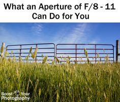 What an Aperture of F/8-11 Can Do for You | Boost Your Photography