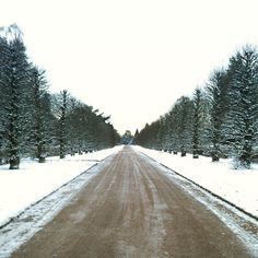 A snowy scene in Copenhagen. Photo courtesy of edindc on Instagram.