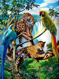 Jungle Friends 3 Oil painting by Wayne Weberbauer Wildlife Paintings, Wildlife Art, Animal Paintings, Animal Drawings, Portrait Paintings, Abstract Portrait, Painting Abstract, Acrylic Paintings, Art Paintings