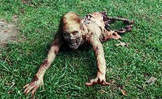 Zombies - one friggin ugly picture of a Zombie bitch added to our Horror Board Zombie Life, Zombie Vampire, Zombie Apocolypse, Zombie Attack, Walking Dead Zombies, Zombie Movies, The Walking Dead 3, Bicycle Girl, Stuff And Thangs