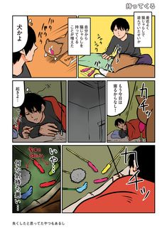 【連載】鴻池剛と猫のぽんたニャアアアン! 第5回「持ってくる」 | ダ・ヴィンチニュース