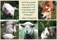 compassion to all living things..
