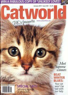 Catworld - Jan 2014