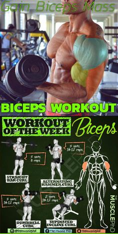 We've compiled a list of the 12 best upper body exercises for your triceps and biceps. You''ll notice that each workout attacks your biceps and triceps from multiple angles. So in order to best train your arms you want to choose right exercises that will Arm Workout Men, Bicep And Tricep Workout, Gym Workout Chart, Biceps And Triceps, Gym Workout Tips, Fitness Workouts, Weight Training Workouts, Biceps Training, Best Biceps